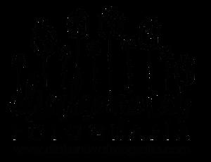 Logo Diaconova